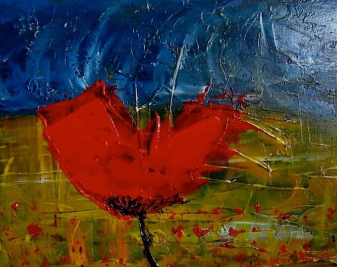 Brussels Poppy