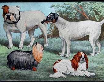 DIGITAL FILE of Antique Dogs Lithograph