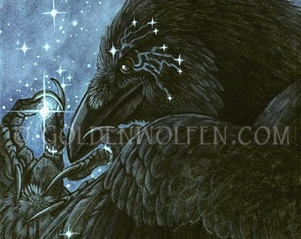 Raven Collecting Stars in Feathers Print