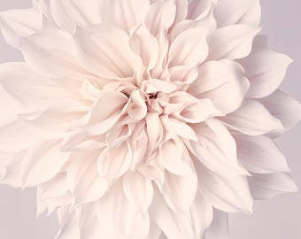 Dahlia Flower Print, Neutral Wall Art, Bedroom Wall Art, Living Room Wall Art, Home Decor, Wall Art Floral, Wall Decor, Large Wall Art Print