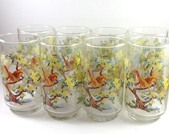 Set of 8 Libbey Made in USA Tumbler/Water Glasses in Original Box-Colorful Bird Motif/Libby