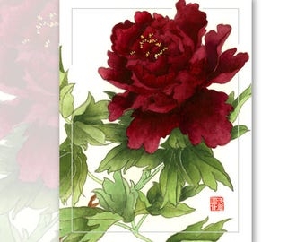 Watercolor Chinese Brush Painting Cards -  Peony