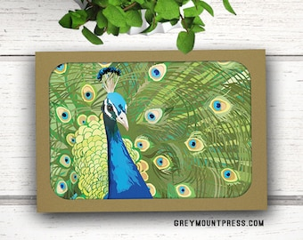 Bulk cards etsy peacock note cards with envelopes 10 pack blank folded note cards note card m4hsunfo Gallery