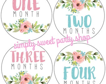 printable floral baby month stickers, girl flower month stickers, pink and blue baby month stickers, INSTANT DOWNLOAD