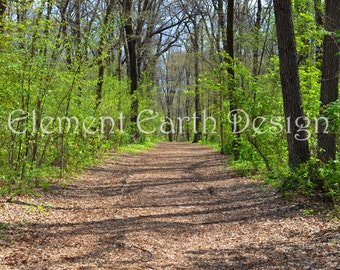 Path in the Woods, Instant Download, 11x14, Lake, Digital Printable, Fine Art Digital Photo, Photography, landscape