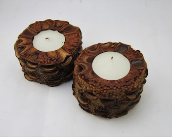 Banksia Pod Tea Light Holders