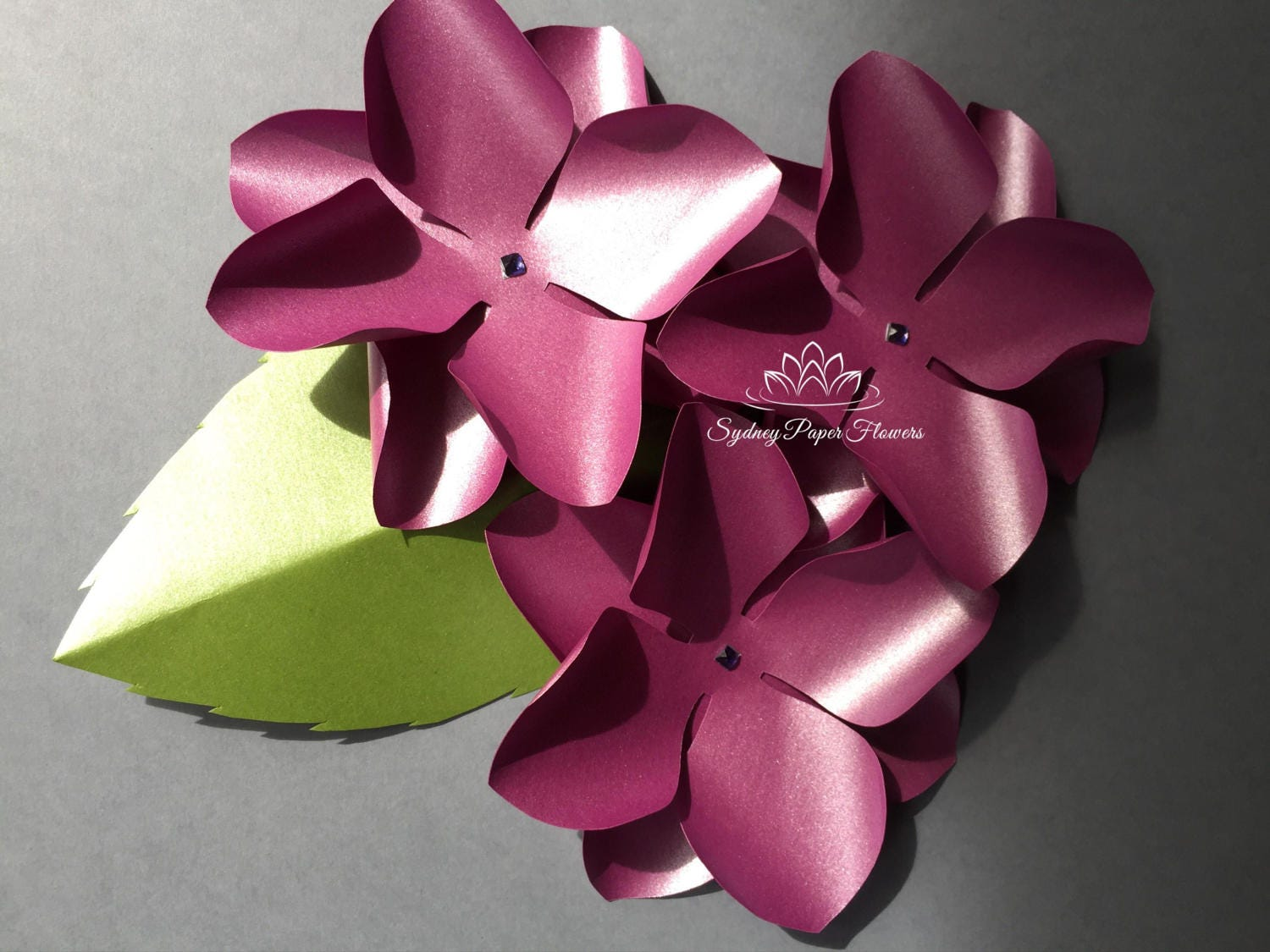 Hydrangea paper flower templates video tutorial svg pdf this is a digital file mightylinksfo Gallery