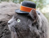 Father's Day Cat (Dog) Hat - Thanksgiving Cat Hat -Spiced Pumpkin -  Festive Mini Hat