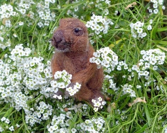 Needle Felted  Animal Sculpture Prairie Dog by Fiber Artist Gerry / poseable