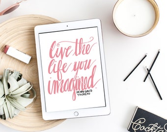 Live the Life SVG, Live the Life, Imagination Quote, Imagination SVG, Hand Lettered, Silhouette SVG, Graphic overlay