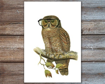 hipster owl, black glasses owl home decor, decorative owls - owl decor, art print, nerd gifts, owl print
