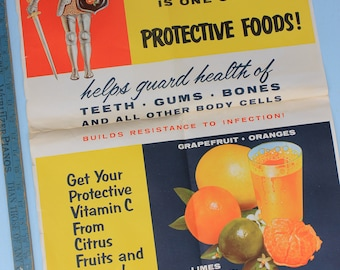Vintage Poster, Citrus, Florida Citrus Commission, School Education, Oranges