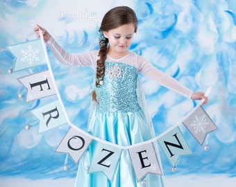 Frozen costume Elsa inspired costume 10 satin style skirt
