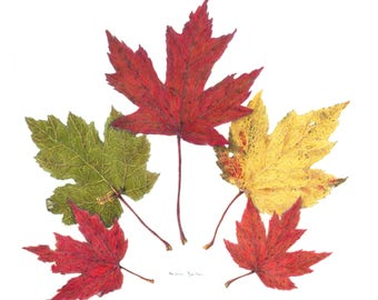 "Set of 5 Botanical Note Cards, Red Maple Leaves, 4.25"" x 5.5"" Card + Matching Envelopes"