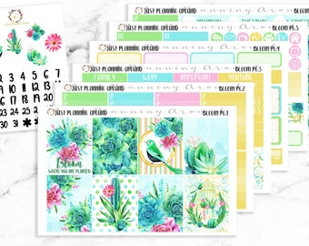 Succulent Planner Kit, Succulent Weekly Kit, Succulent planner stickers, for use with Erin Condren