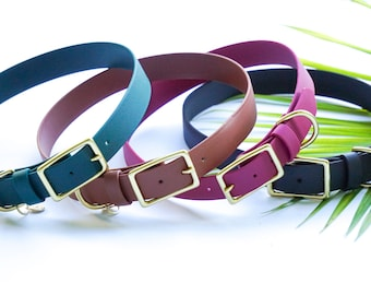 """LARGE/XL Water Dog Buckle Collar, 1"""" wide waterproof webbing, dirt resistant, leather free, Christmas Gift, Dog Gift"""