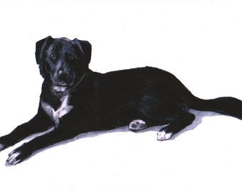 Black Labrador art print, Black Lab art images,drawing,Labrador wall art /fine art/in art,I love Labradors,Labrador gifts,Labrador retriever