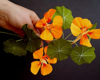 Paper Nasturtium Tutorial / Paper Flower Tutorial