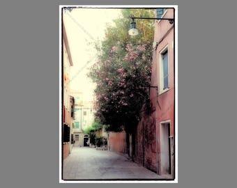 Photo Print, Huge Cascading Bunch of Pink Flowers, Vintage Effect Fine Art Photo Print, Brick Wall in Venice Italy, Boho European Wall Art
