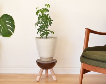 Plant stand solid walnut with dowel maple legs