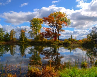 Autumn marshlands, HDR photograph, Blue, red, green, yellow, fine photography prints, Tranquility