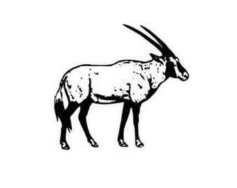 GEMSBOK unmounted rubber stamp, African Antelope, Africa safari, wild animal, travel journal stamp, Sweet Grass Stamps No.17