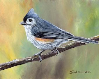 Bird Art -  Painting - Wildlife -  Tufted Titmouse - SFA - Original hand painted -  acrylic bird painting - Bird lover gift - Realistic