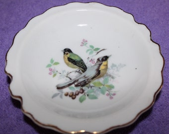 Vintage miniature bird plate