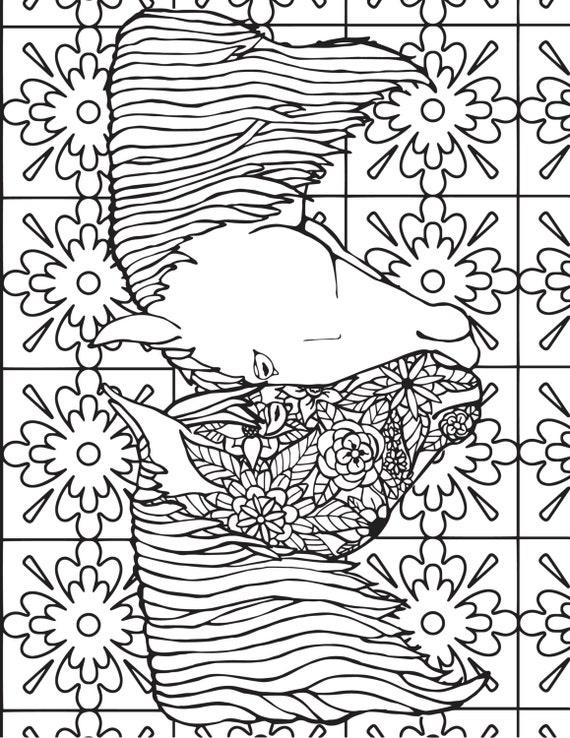 Tres creativas caballo páginas-3 páginas para colorear Potros