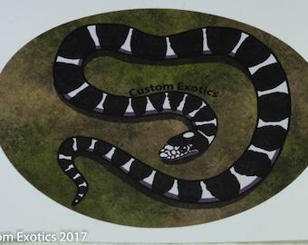 King Snake Vinyl Sticker