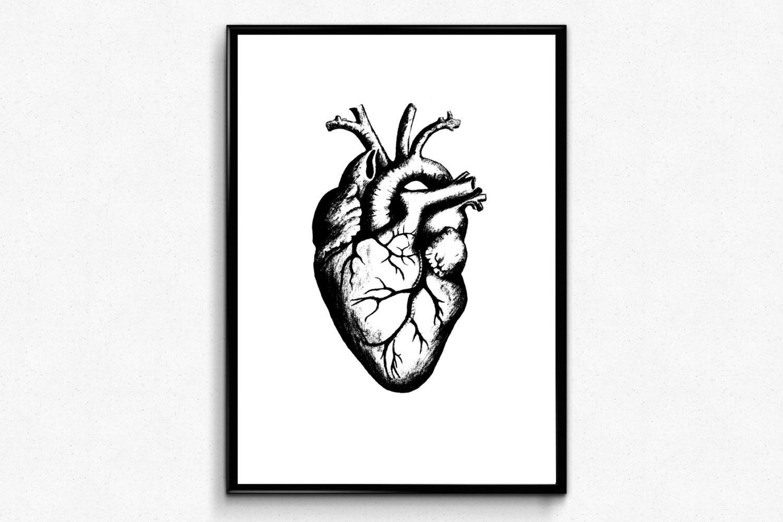Heart Anatomy Print Anatomical Heart Art Geek Love Anatomy