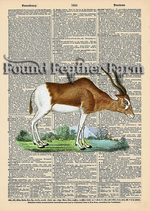 """Vintage Antique Dictionary Page with Antique Print """"Antelope"""""""