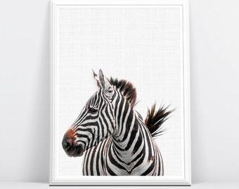 Zebra Print, Nursery Animal Print, Nursery Art, Nursery Printable, Safari Nursery Art, Animal Prints, Digital Download, Nursery Art Decor