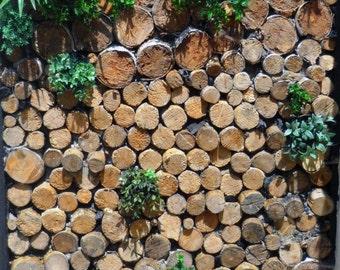 Green Wall, green wall, logs, wooden logs, plant design, green