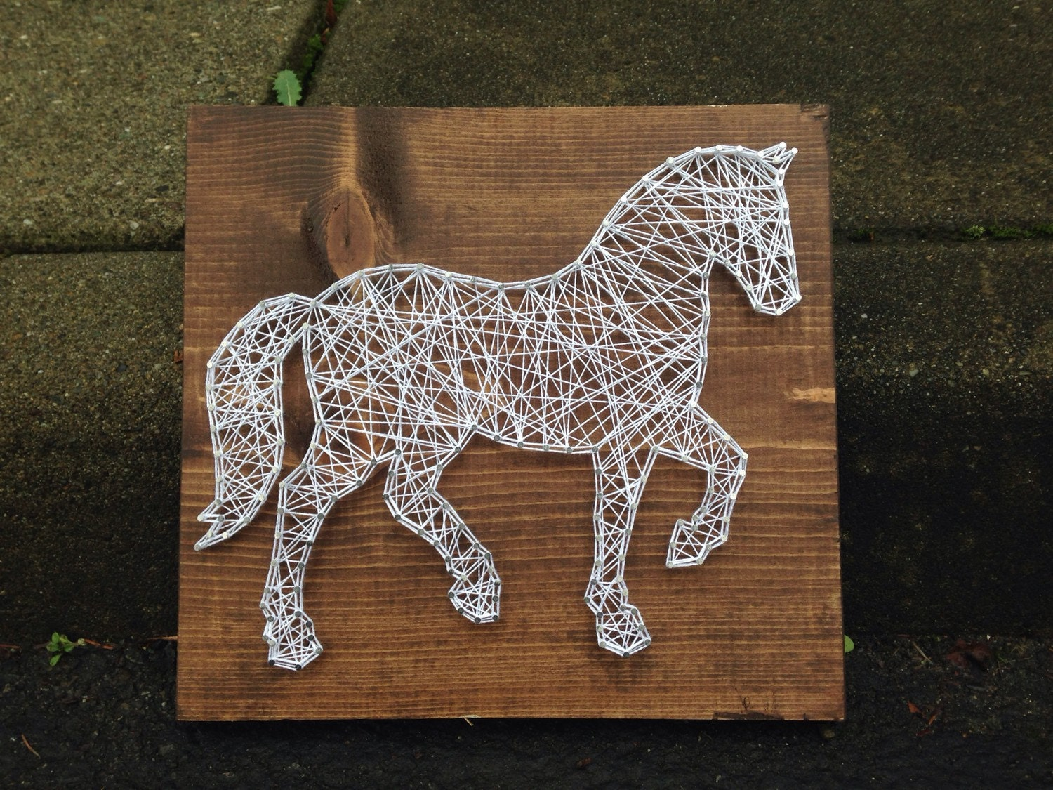 Made to order horse string art zoom prinsesfo Gallery