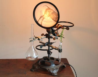 Science lamp Steampunk industrial decor laboratory desk chemistry upcycled table lighting cool antique biology apothecary volumetric flask