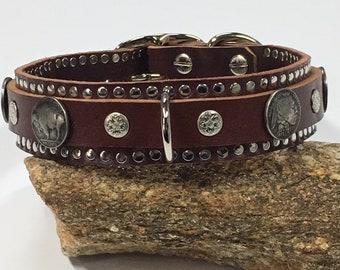 Buffalo Indian Western Soutwestern – K9 Dog Collar - shown on Brown Leather