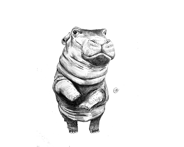 Fiona the Hippo Print