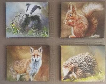 Uk wildlife oil painting prints. On canvas frames. Free postage