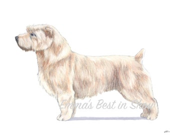 Glen of Imaal Terrier Dog - Archival Fine Art Print - AKC Best in Show Champion - Breed Standard - Terrier Group - Original Art Print