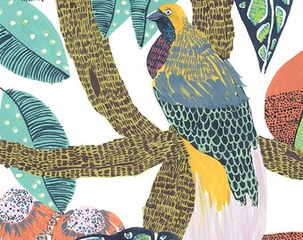 Tropical Birds of Paradise Print