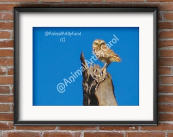 Owl Wall Art - Owl Print, perfect gift for a friend or for home or office