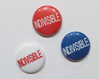 Political Pins 1 inch Pinback Button