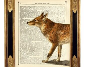 Red Fox Art Print Woodland Forest Vixen Poster - Vintage Victorian Book Page Art Print Steampunk