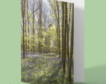 bluebell greeting card - bluebells - floral card - woodland card - nature card - greetings card - any occasion card - customised card