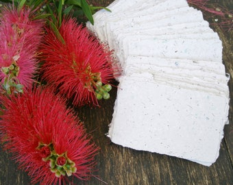 20 Blank Cards with Bottlebrush, Handmade Business Cards, Recycled Paper, Place Cards, Florist's card, Attendance Cards, Escort Cards