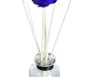 Apothecary Blue Rose Fragrance Diffuser by MelroseFields