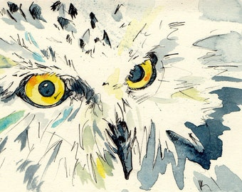 Owl Art Print - Watercolor and Ink Painting Reproduction Print of an Owl Eyes - Prints of Original Art by Jen Tracy - Gift for Pet Lover