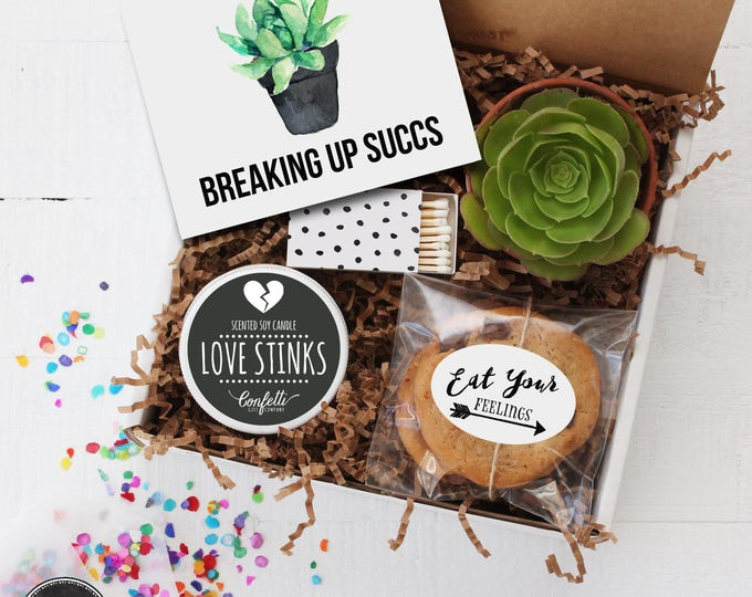 Breaking Up Succs -  Break Up Gift | Divorce Gift | Friend Gift | Send a Gift | Thinking of You Gift | Succulent Gift