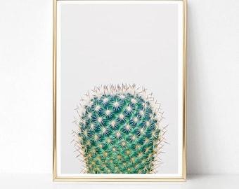 Cactus Print, Cactus Printable, Minimalist Wall Art, Green Printable Art, Digital Download, Large Poster, Cactus Art, South West Decor